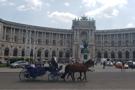 Horse and buggy in Brussels, Belgium