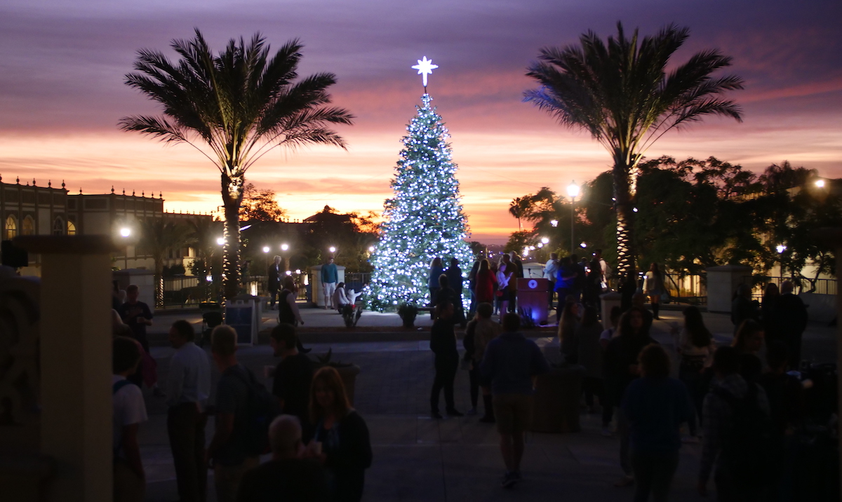 The Christmas Tree between two palm trees at sunset